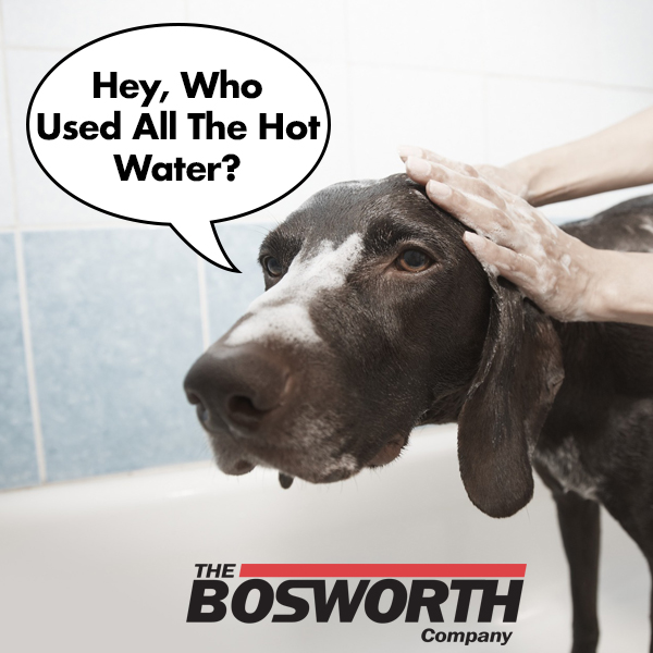 Bosworth Blog Hey who used all the hot water